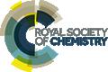 RSC Publishing Logo